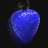 Blue Straberry from Blue Planet